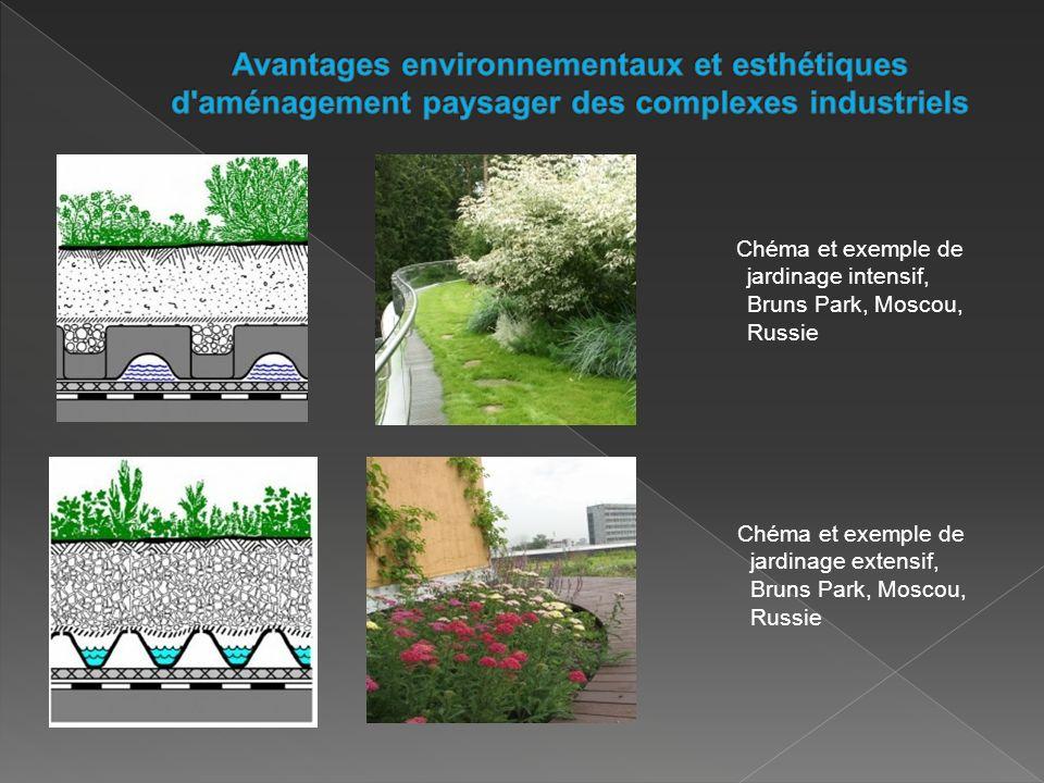 Avantages environnementaux et esthétiques d aménagement paysager des complexes industriels