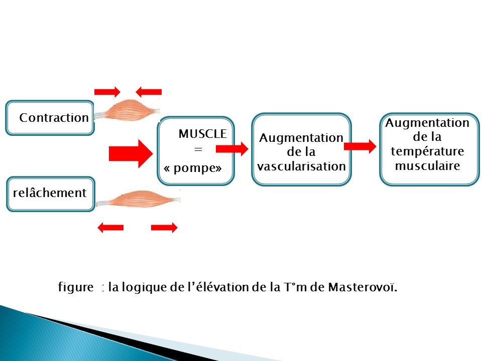 Augmentation de la. vascularisation. température. musculaire. relâchement. Contraction. « pompe»