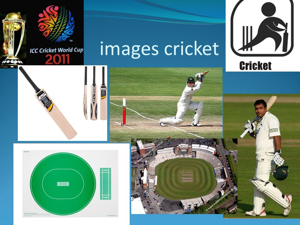 images cricket