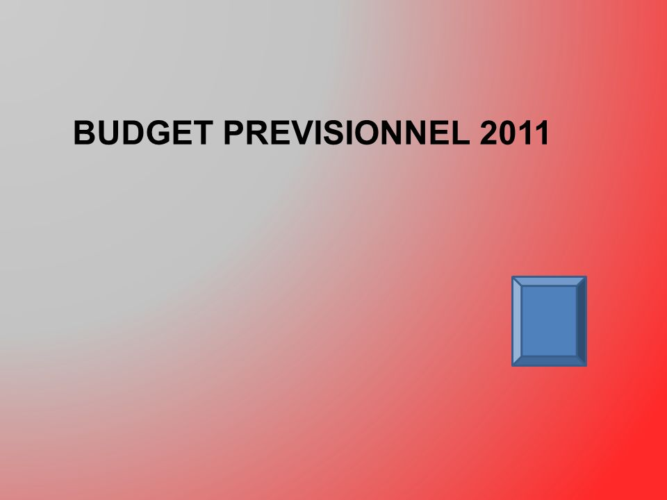 BUDGET PREVISIONNEL 2011