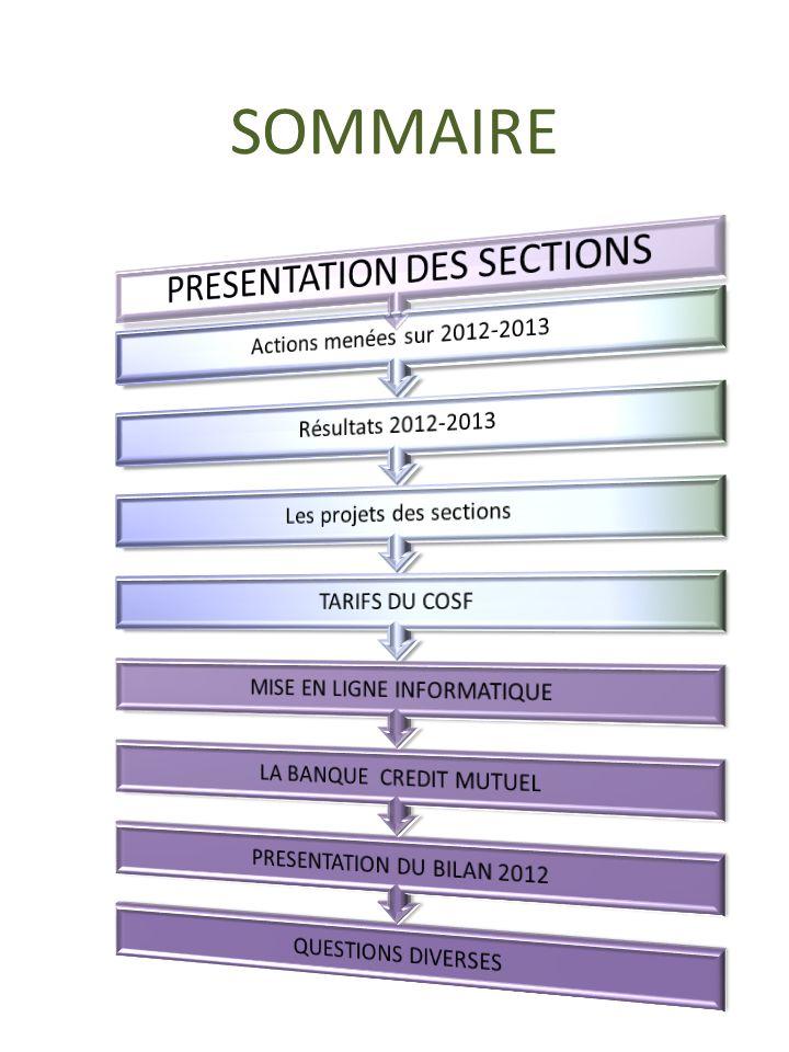 SOMMAIRE PRESENTATION DES SECTIONS Actions menées sur 2012-2013