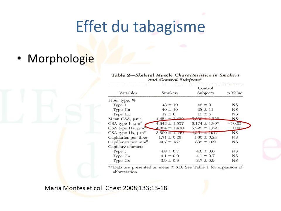 Effet du tabagisme Morphologie