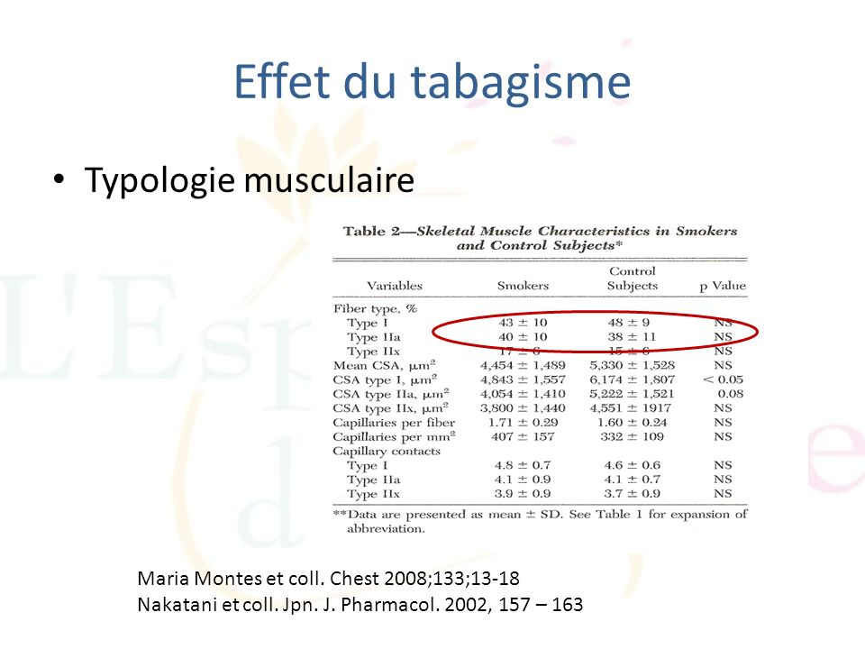Effet du tabagisme Typologie musculaire