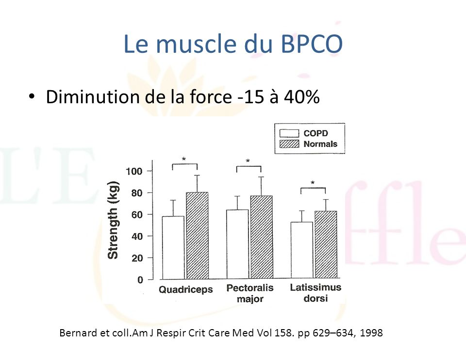 Le muscle du BPCO Diminution de la force -15 à 40%