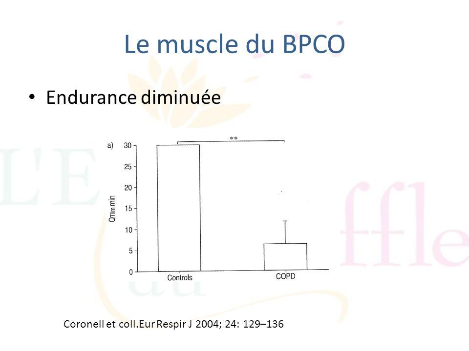 Le muscle du BPCO Endurance diminuée