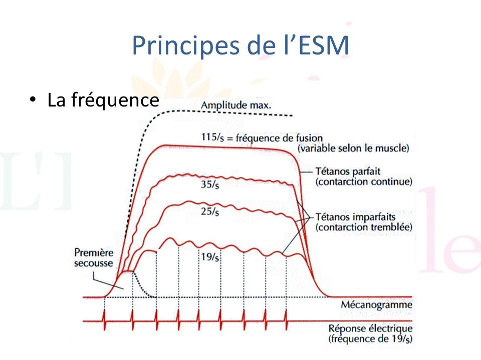 Principes de l'ESM La fréquence
