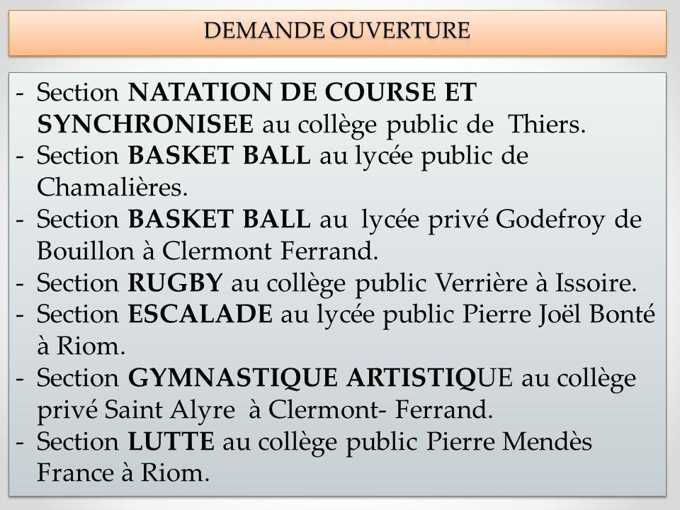 Section BASKET BALL au lycée public de Chamalières.