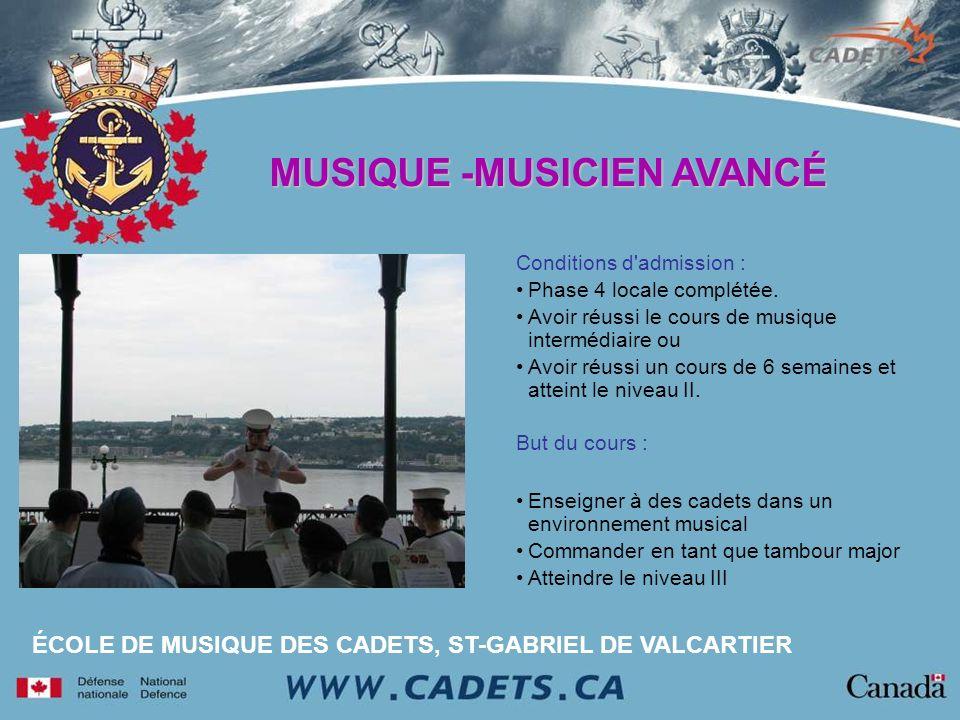 MUSIQUE -MUSICIEN AVANCÉ
