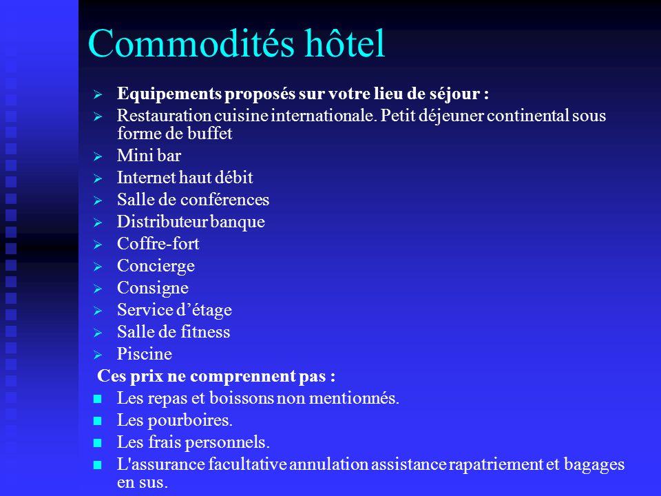 Commodités hôtel Equipements proposés sur votre lieu de séjour :