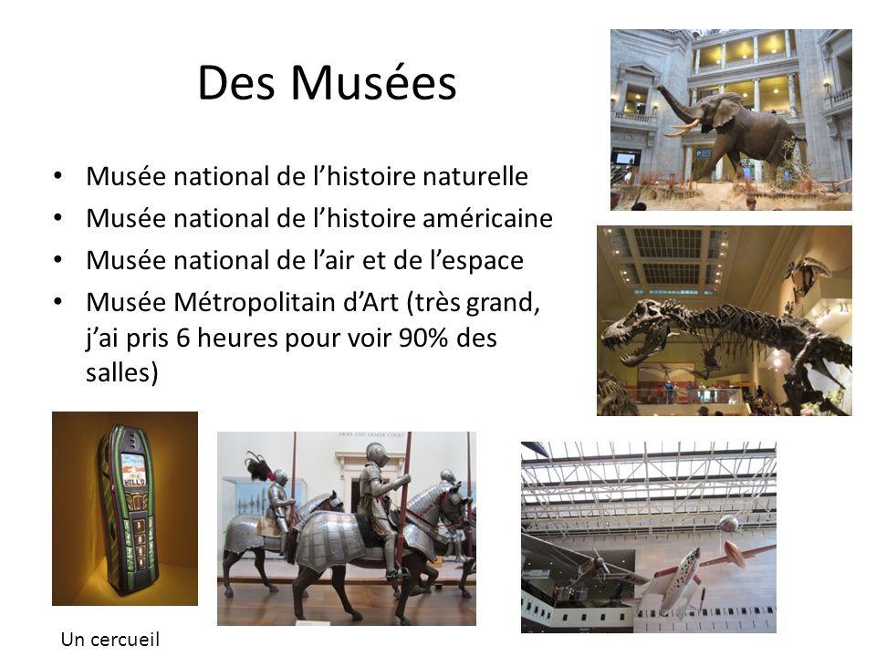 Des Musées Musée national de l'histoire naturelle