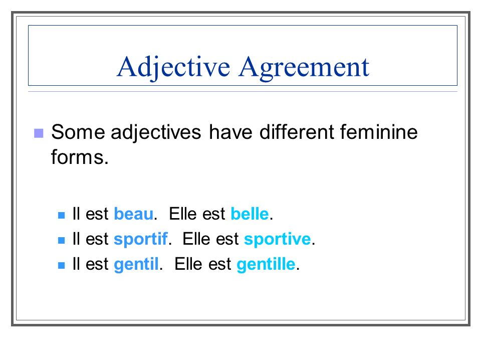 Adjective Agreement Some adjectives have different feminine forms.