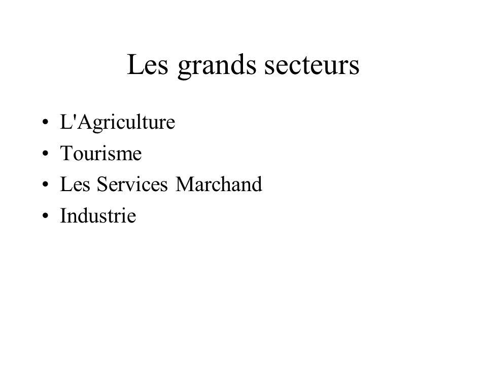 Les grands secteurs L Agriculture Tourisme Les Services Marchand