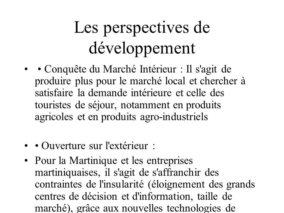 Les perspectives de développement