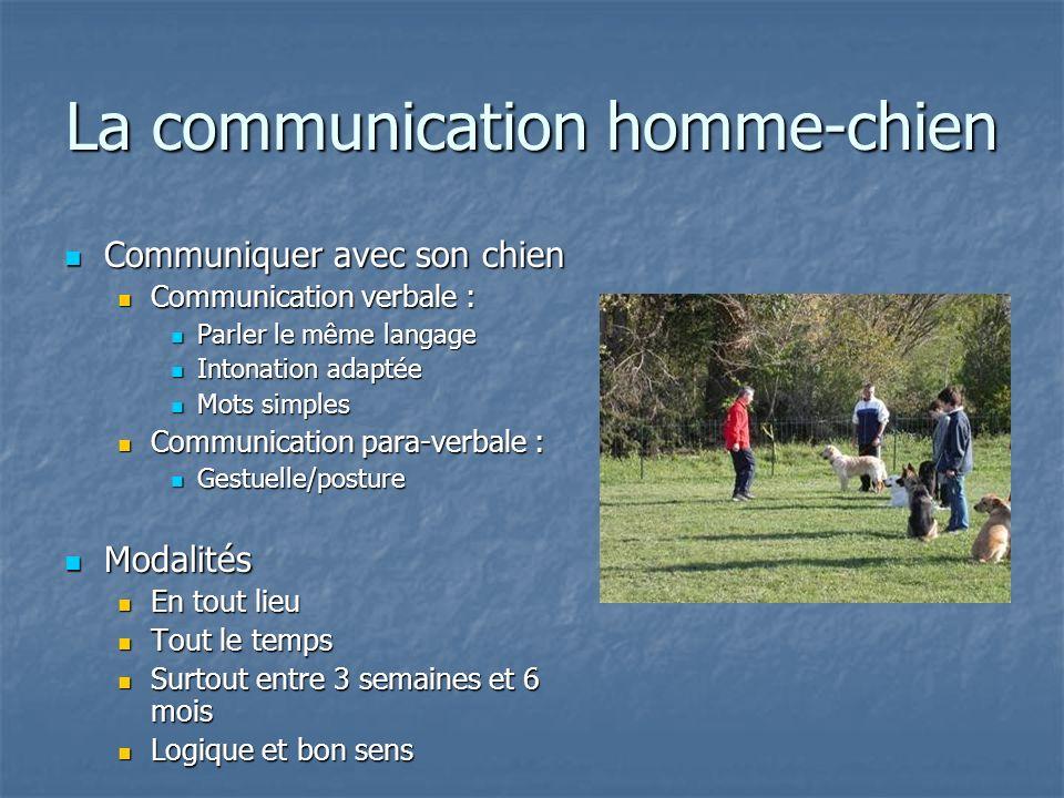 La communication homme-chien