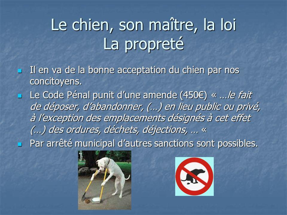 Le chien, son maître, la loi La propreté