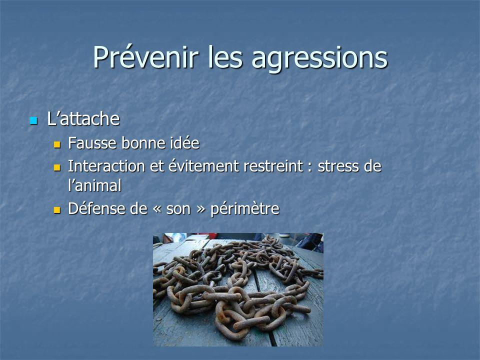 Prévenir les agressions