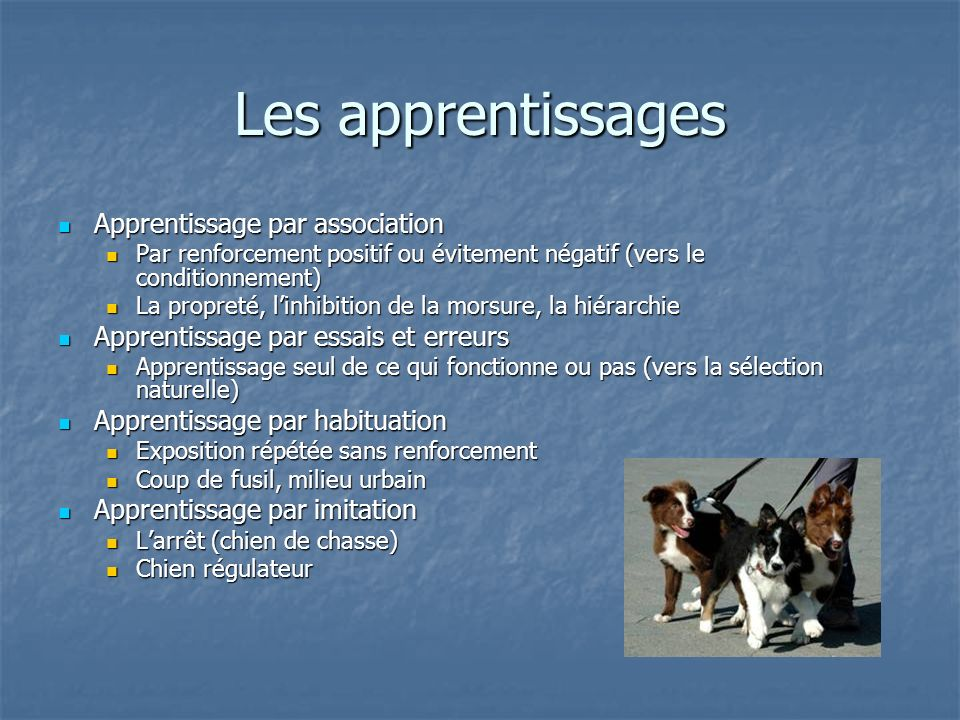 Les apprentissages Apprentissage par association