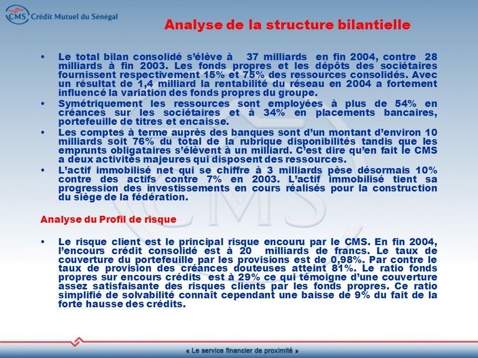 Analyse de la structure bilantielle