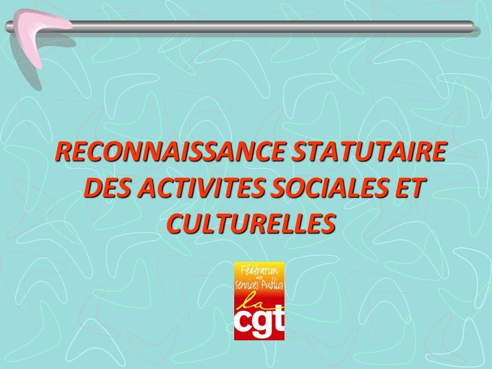 RECONNAISSANCE STATUTAIRE DES ACTIVITES SOCIALES ET CULTURELLES