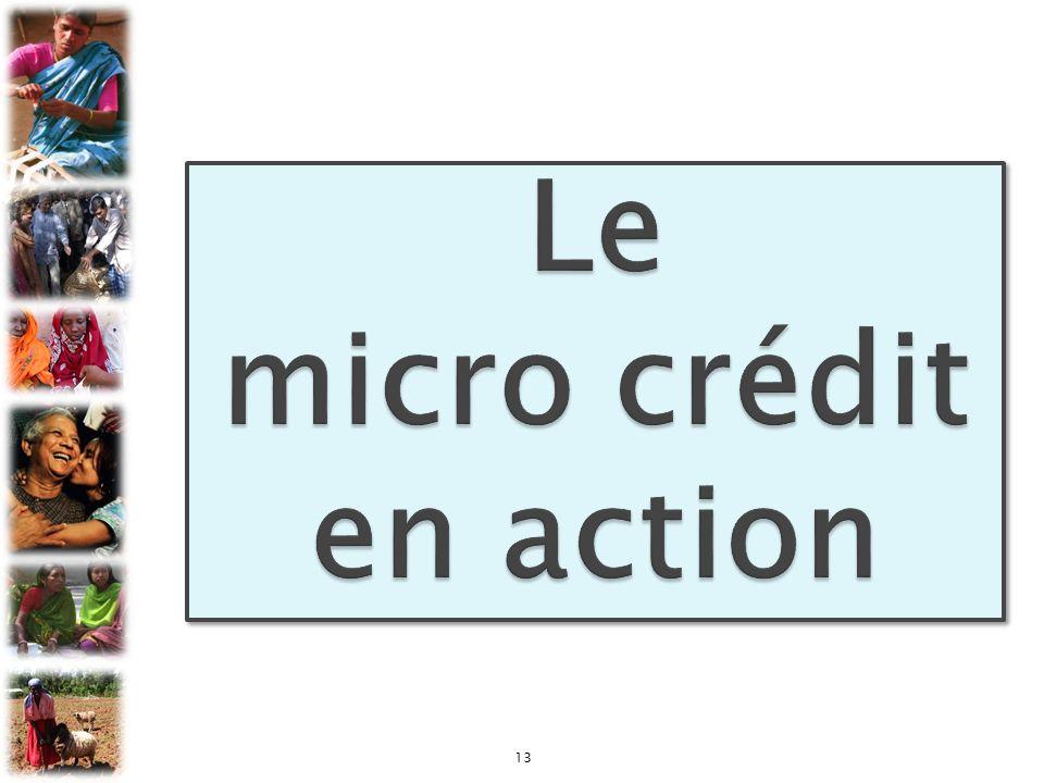 Le micro crédit en action
