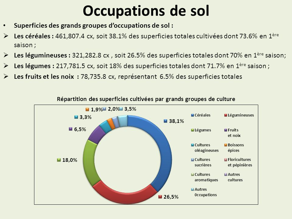 Répartition des superficies cultivées par grands groupes de culture