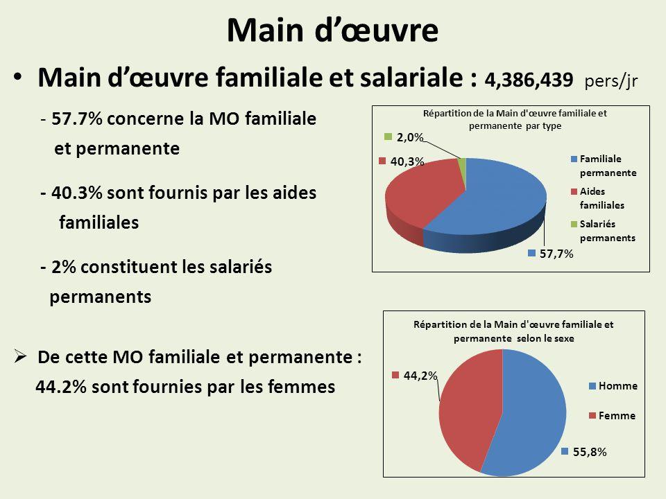Main d'œuvre Main d'œuvre familiale et salariale : 4,386,439 pers/jr