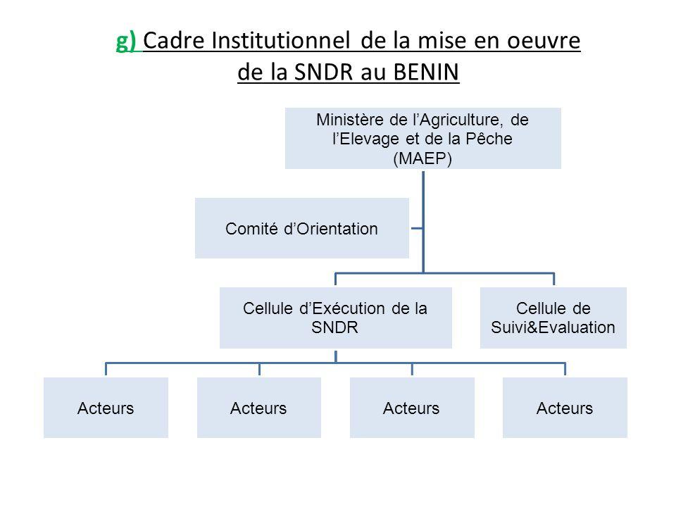 g) Cadre Institutionnel de la mise en oeuvre de la SNDR au BENIN