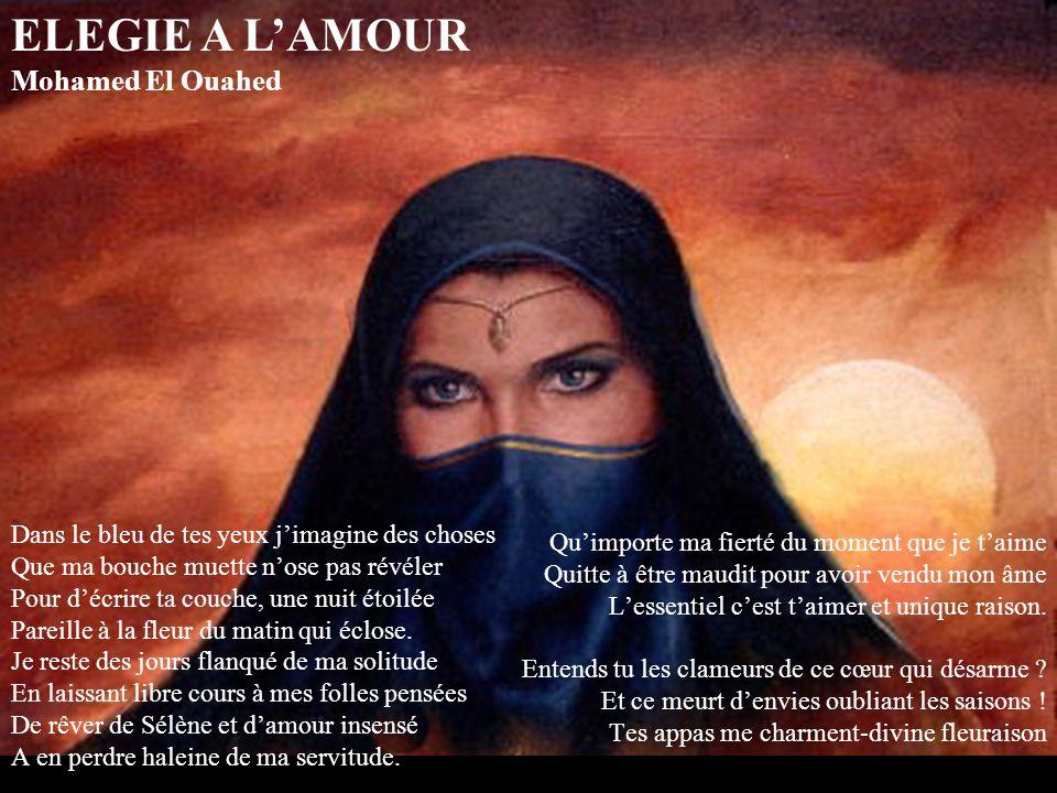 ELEGIE A L'AMOUR Mohamed El Ouahed