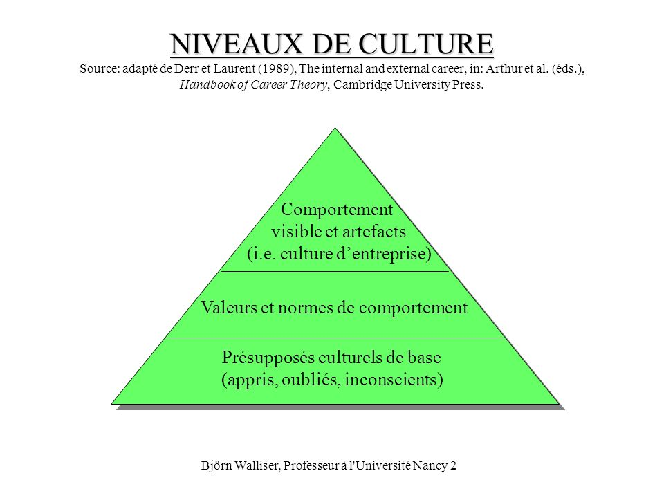 NIVEAUX DE CULTURE Source: adapté de Derr et Laurent (1989), The internal and external career, in: Arthur et al. (éds.), Handbook of Career Theory, Cambridge University Press.