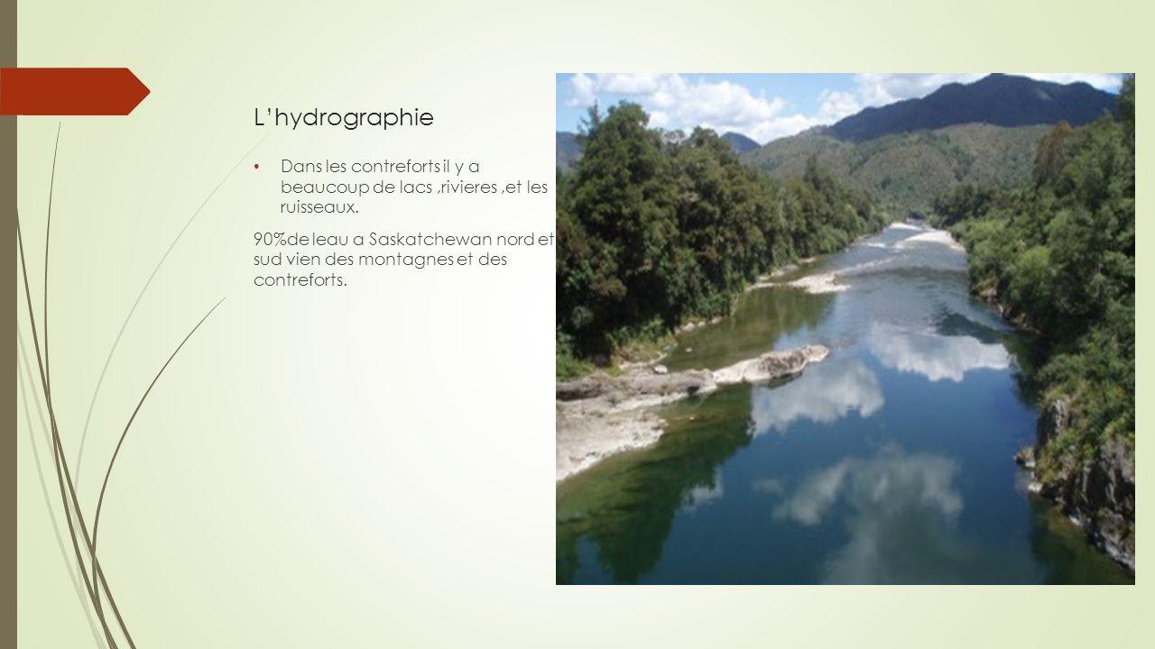 L'hydrographie Dans les contreforts il y a beaucoup de lacs ,rivieres ,et les ruisseaux.