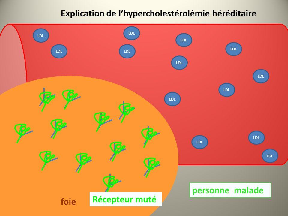 Explication de l'hypercholestérolémie héréditaire