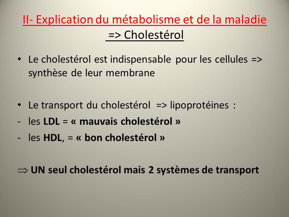 II- Explication du métabolisme et de la maladie => Cholestérol