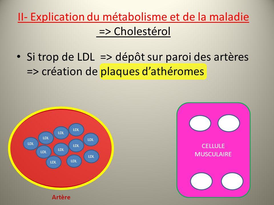 II- Explication du métabolisme et de la maladie