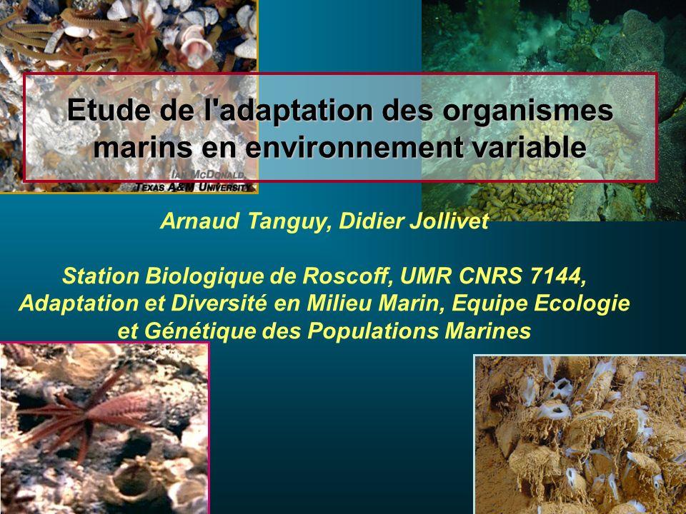 Etude de l adaptation des organismes marins en environnement variable