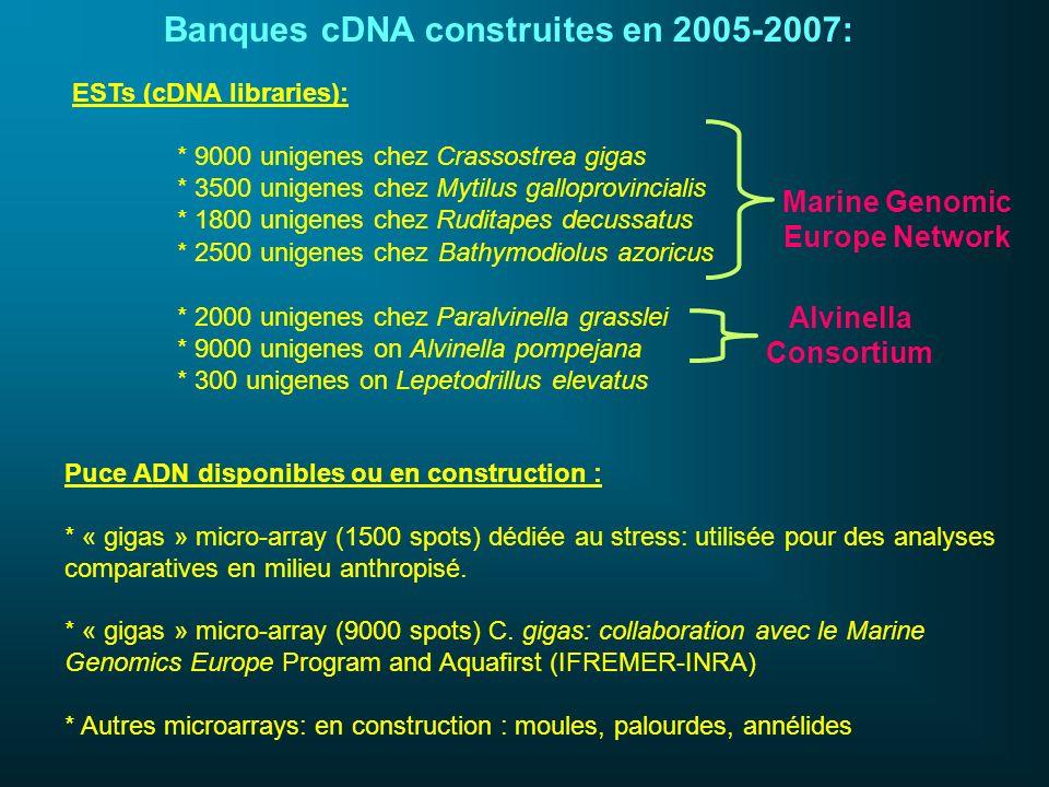 Banques cDNA construites en 2005-2007: