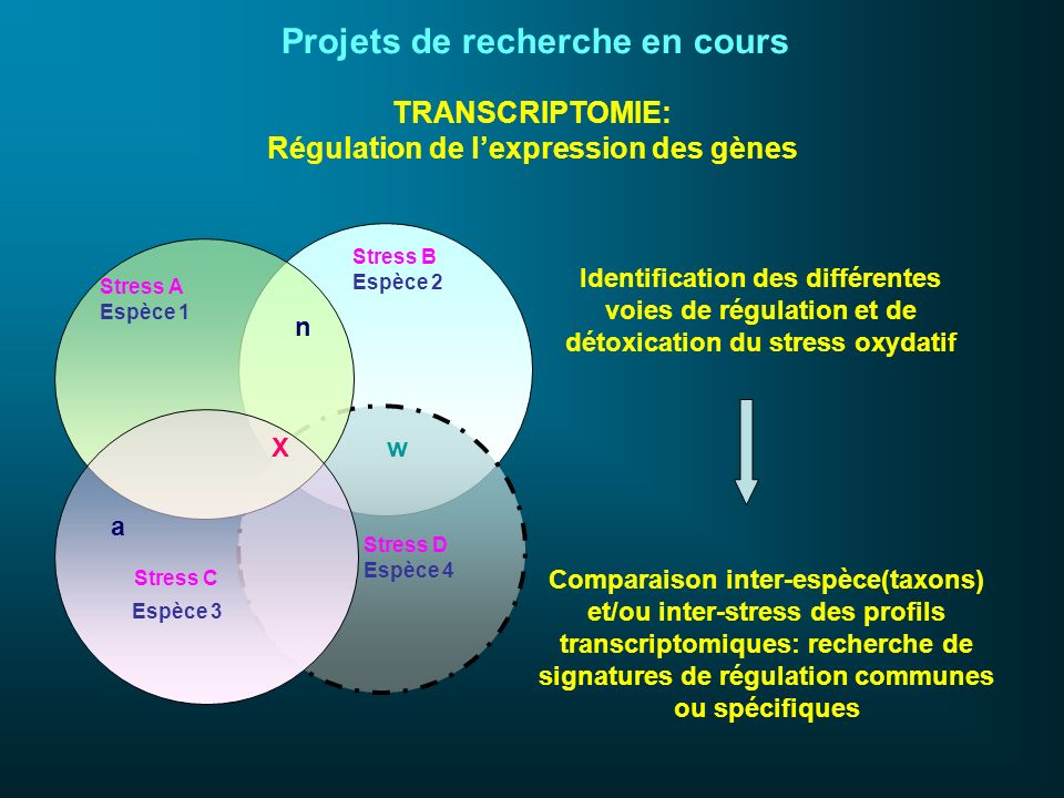 Régulation de l'expression des gènes