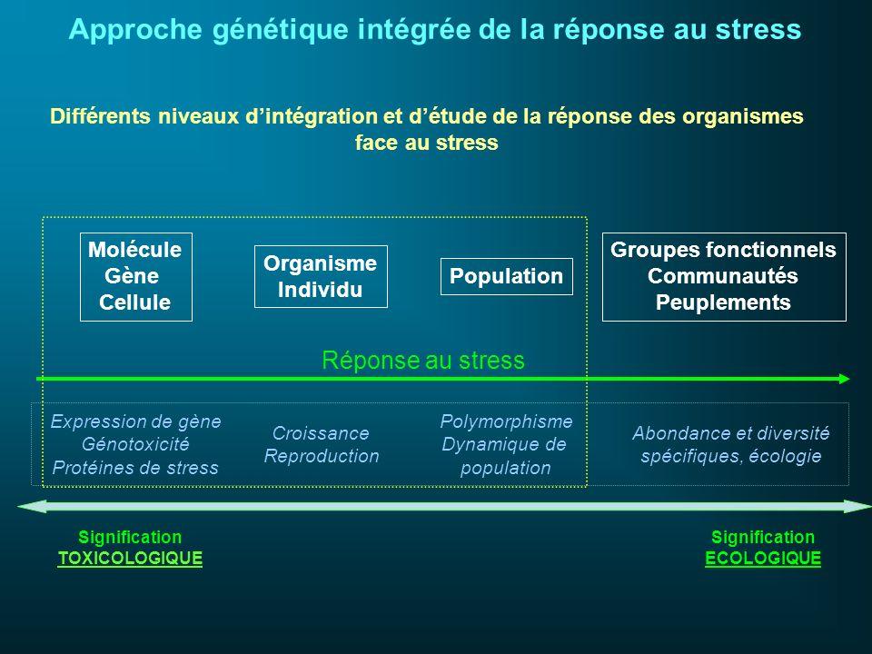 Approche génétique intégrée de la réponse au stress
