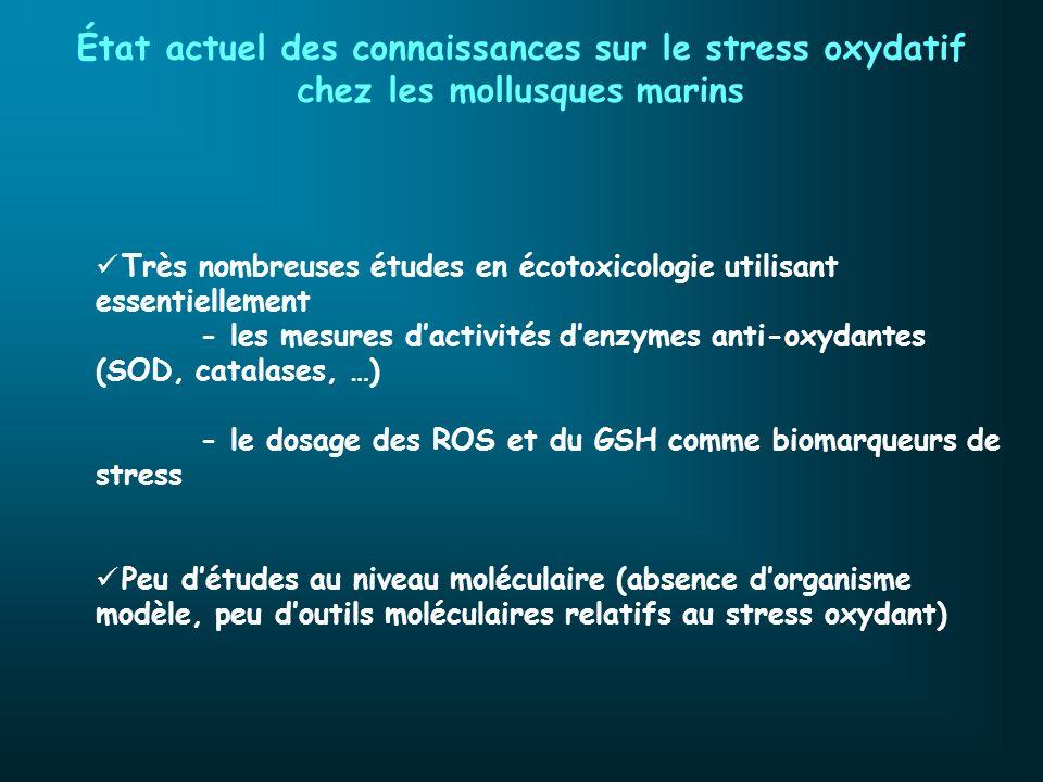 État actuel des connaissances sur le stress oxydatif chez les mollusques marins