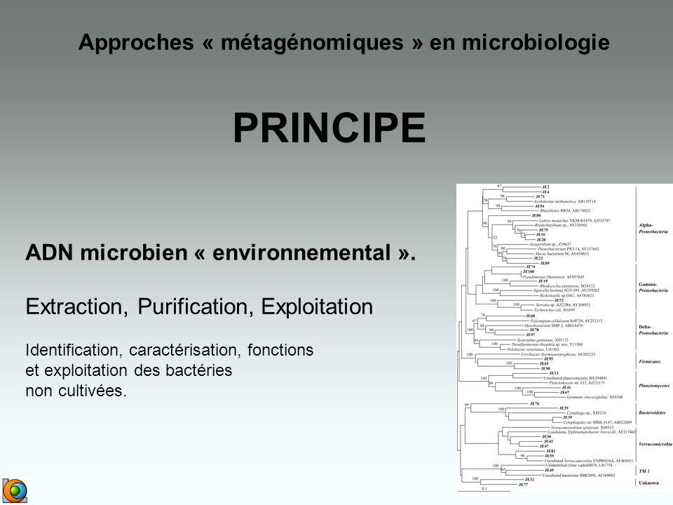 PRINCIPE Approches « métagénomiques » en microbiologie