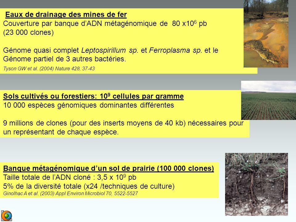 Eaux de drainage des mines de fer