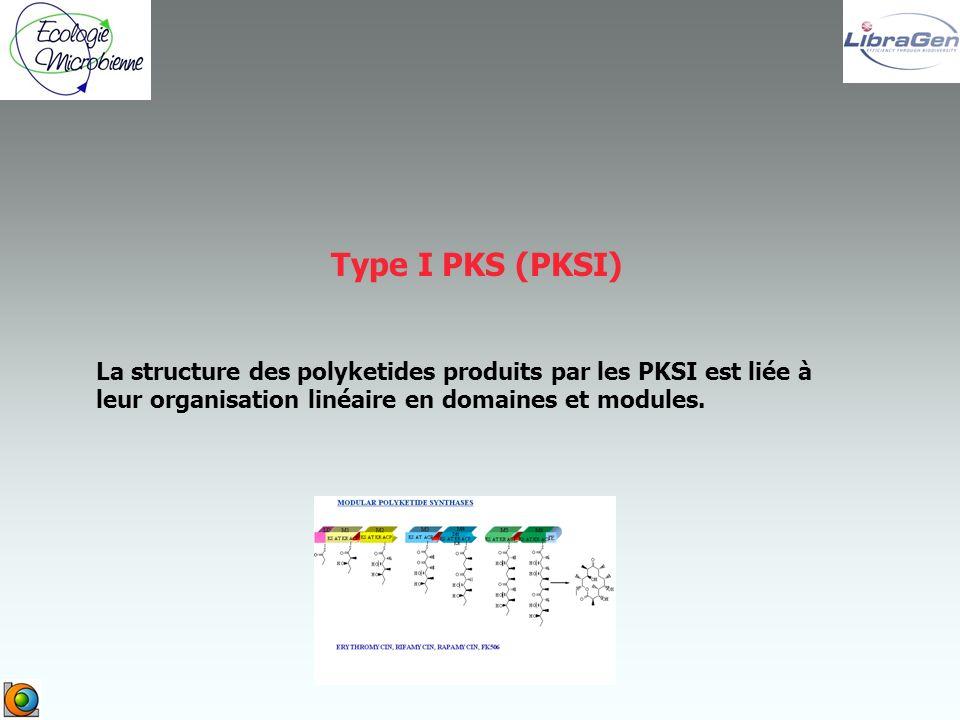 Type I PKS (PKSI) La structure des polyketides produits par les PKSI est liée à leur organisation linéaire en domaines et modules.