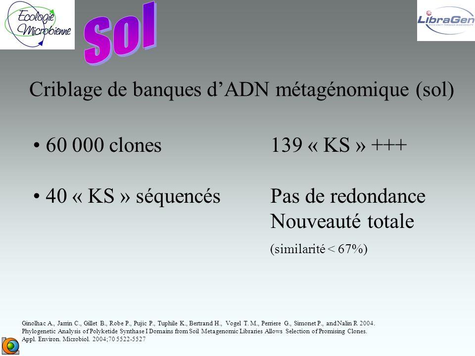 Sol Criblage de banques d'ADN métagénomique (sol)