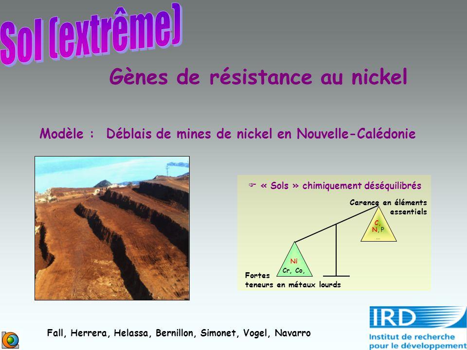 Gènes de résistance au nickel