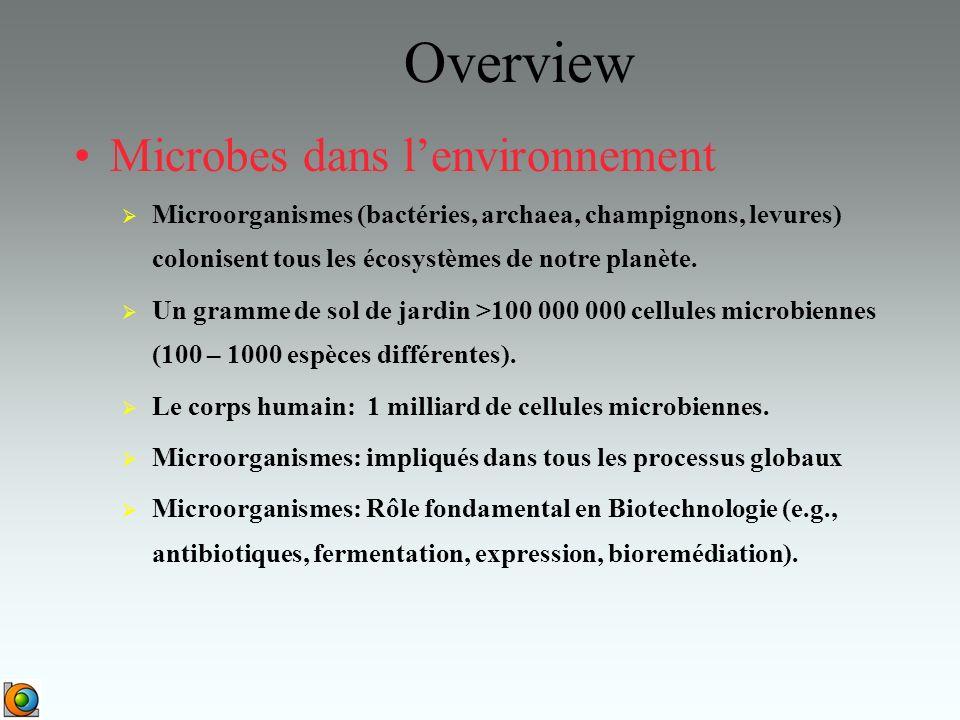 Overview Microbes dans l'environnement