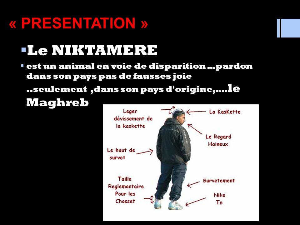 « PRESENTATION » Le NIKTAMERE