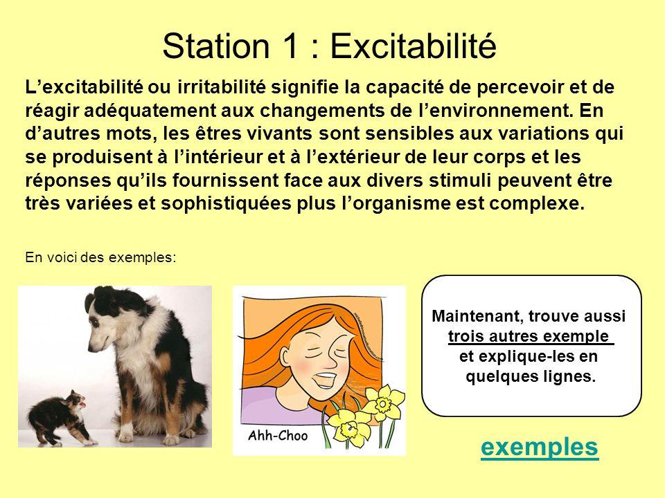 Station 1 : Excitabilité