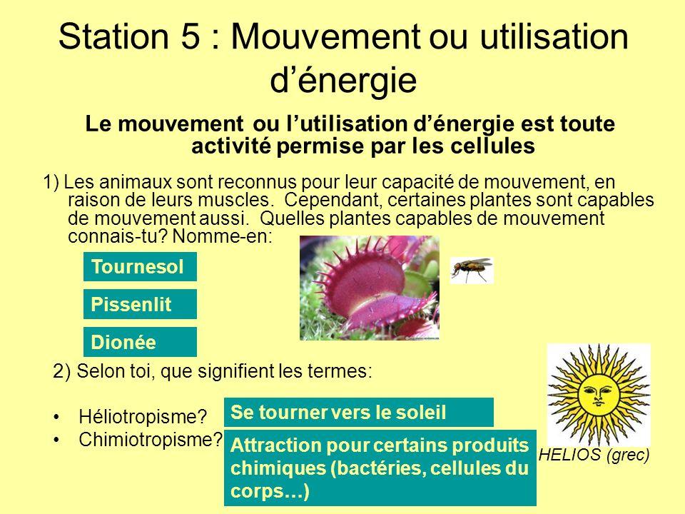 Station 5 : Mouvement ou utilisation d'énergie