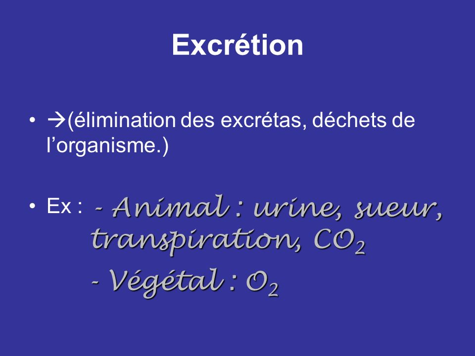 Excrétion - Animal : urine, sueur, transpiration, CO2 - Végétal : O2