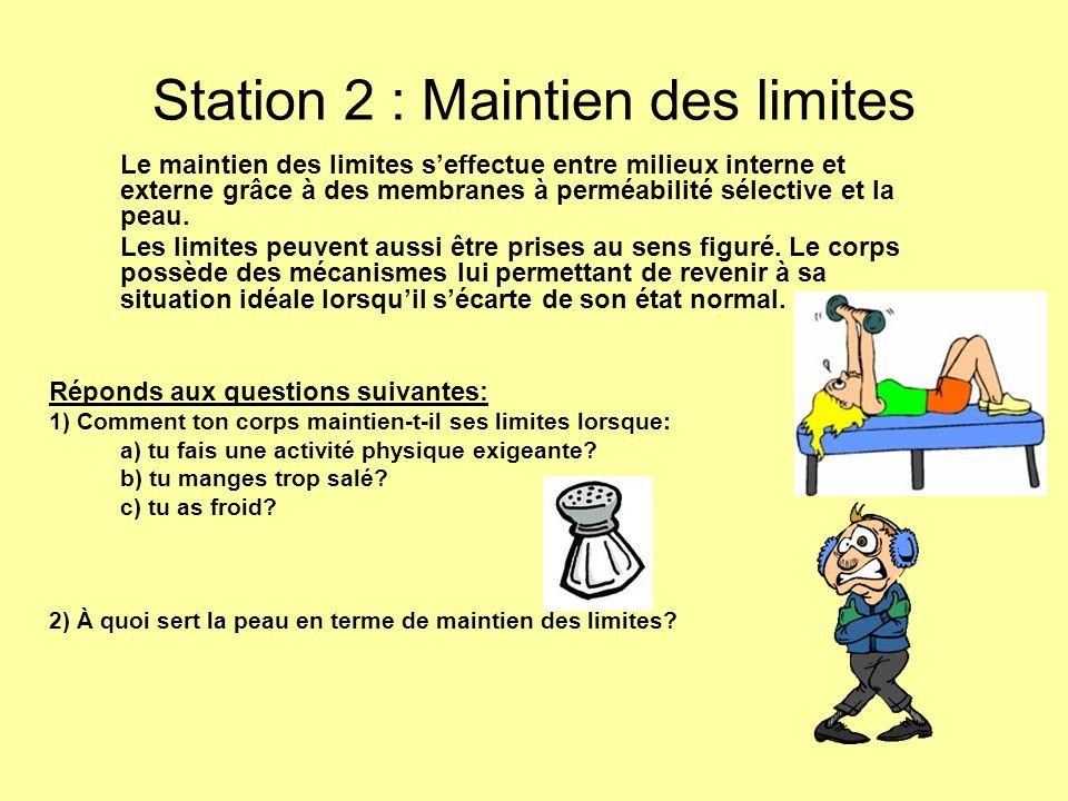 Station 2 : Maintien des limites