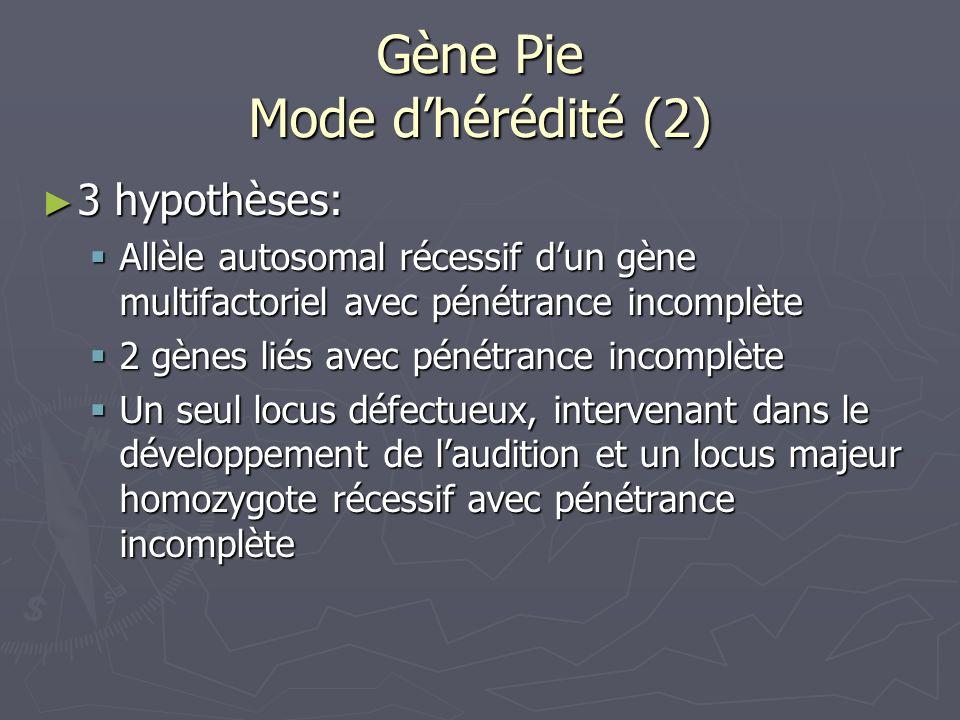 Gène Pie Mode d'hérédité (2)